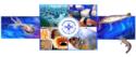 ประเทศไทยจะเป็น ASEAN Seafood Hub