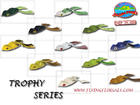 �����͡� SCUM FROG TROPHY SERIES