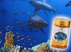 Health N Nature Squalene น้ำมันอันทรงคุณค่าจากตับปลาฉลามน้ำลึก ดูแลรักษาผิวพรรณ ทั่วร่างกาย ผม เล็บ พร้อมด้วยสาร Anti-Oxidant เพียบ 200 Softgels.