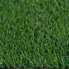ขาย หญ้าเทียม ปูพื้น สีเขียว (ใบหญ้าเล็ก) ความสูง 2 ซม. DG-VICTORY Green-All (2V เขียวล้วน) ราคาโปรโมชั่น 199 บาท/ตรม.