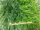 หญ้าเทียมฟุตบอล  50 mm สีทูโทน