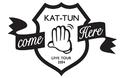 สินค้าคอน KAT-TUN LIVE TOUR 2014 come Here