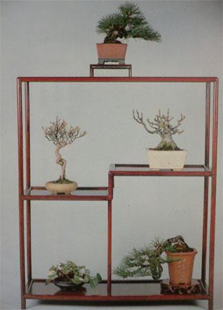 bonsaibaan 02110