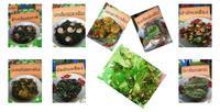 ปลูกผักเหลียงเป็นพืชแซมสะตอ