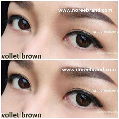 Vollet brown1