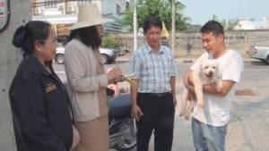 โรคสุนัขบ้าระบาดเขตเทศบาลเมืองมหาสารคาม สั่งห้ามเคลื่อนย้ายสัตว์