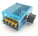 AC 220V 4000W SCR Voltage Regulator Electric Furnaces,Water heater heat regulation Motor