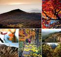 เกาะเชจู เกาหลีใต้ ใบไม้เปลี่ยนสี  4 วัน 2 คืน เดินทาง  5-8 / 7-10 พย นี้ เพียง  7900 บาท