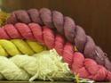 ไหมอีรี่..ทางเลือกใหม่ของวงการไหมไทยหรือชาวไร่มันสำปะหลัง  #ไหมไทย,#Thai silk,#Eri silk,#มันสำปะหลัง,#สกว.