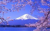 ทัวร์ญี่ปุ่น โตเกียว ภูเขาไฟฟูจิ 5 วัน 3 คืน