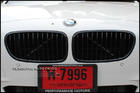 F10 Gloss Black Kidney Grille