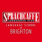 Geos&Sprachcaffe-Brighton (UK) Promotion 2018 ลงเรียนทุก 5 สัปดาห์ ฟรี 1 สัปดาห์