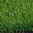 ขาย หญ้าเทียม ปูพื้น สีเขียว (ใบหญ้าเล็ก) ความสูง 3.5 ซม. ROTHENBURG Green-All (3.5R เขียวล้วน) ราคาโปรโมชั่น 440 บาท/ตรม.
