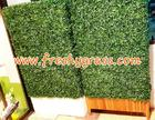 กล่องหญ้าเทียมตีนเป็ด ขนาด 100x150x25 cm