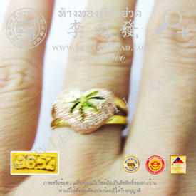 http://www.igetweb.com/www/leenumhuad/catalog/e_1487874.jpg