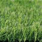 ขาย หญ้าเทียม (ใบหญ้าสีด้านสมจริง) ความสูง 3 ซม. DG-3-HALLSTALT Green-All (3H เขียวล้วน) ราคาโปรโมชั่น 390 บาท/ตรม.
