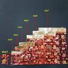 ถุงผ้าใส่ผลส้ม มี 7 ขนาด คุณภาพดี ราคาส่ง ถูกที่สุด นำเข้าจากจีนโดยตรง