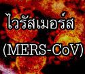ระวังไวรัสเมอร์ส (MERS-CoV) ระบาด เชื้อโรคไม่มียารักษา