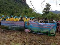ปลูกป่า และป้องกันไฟป่า ดำเนินการในพื้นที่ป่าอนุรักษ์
