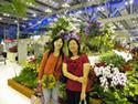 สองอนงค์Two sisters : เพื่อนจากแดนไกล