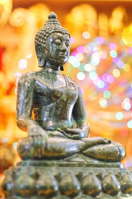 http://v1.igetweb.com/www/triluk/catalog/e_1608091.jpg