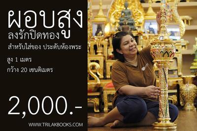 http://www.igetweb.com/www/triluk/catalog/p_2022476.jpg