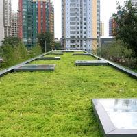 Green Roof กับอาคารเก่า