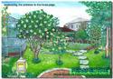 ออกแบบจัดสวน