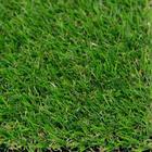 ขาย หญ้าเทียม ปูพื้น สีเขียว (ใบหญ้าเล็ก) ความสูง 2 ซม. DG-ROTHENBURG Green-Yellow (2R  มีหญ้าแห้ง) ราคาโปรโมชั่น 190 บาท/ตรม.