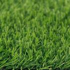 ขาย หญ้าเทียม (ใบหญ้าสีด้านสมจริง) ความสูง 2 ซม. DG-2-HALLSTALT Green-All (2H เขียวล้วน) ราคาโปรโมชั่น 290 บาท/ตรม.