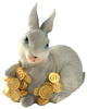 กระต่ายกระปุกเรซินสีเทาบนกองเหรียญ