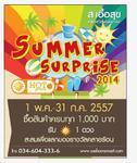 Summer Surprise 2014