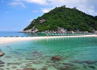 เกาะเต่า & เกาะนางยวน โดยสปีดโบ้ท