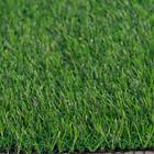 ขาย หญ้าเทียม ปูพื้น สีเขียว (ใบหญ้าเล็ก) ความสูง 2.5 ซม. VICTORY Green-All (2.5V เขียวล้วน) ราคาโปรโมชั่น 330 บาท/ตรม.