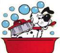 การอาบน้ำแต่งขนสุนัขหมา