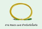 สาย Pacth Cord