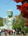 ญี่ปุ่น โตเกียว ฟูจิ ฮาโกเน่ พระใหญ่  5 วัน 3 คืน ช่วงใบไม้เปลี่ยนสี เพียงท่านละ 28,900 บาท